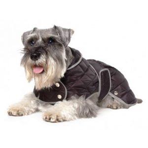 Dog Coats, Vests & Jumpers