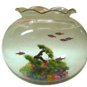Glass Bowl 19 litre