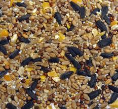Wild Bird Seed 3kg