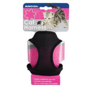 BLACK CAT HARNESS & LEAD SET SMALL