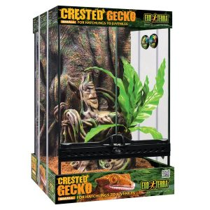 Exo Terra Crested Gecko Starter Kit