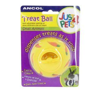 Small Animal Treat Ball Toy